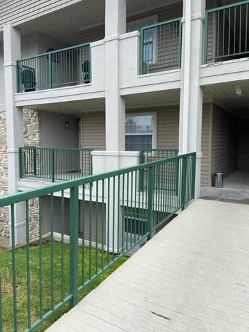 180 W Rockford Drive #5, Branson, MO 65616 (MLS #60158158) :: Sue Carter Real Estate Group