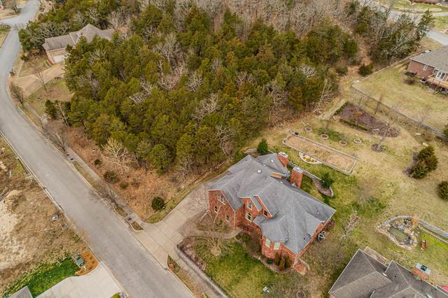 307 Summerwood Drive, Branson, MO 65616 (MLS #60158287) :: The Real Estate Riders