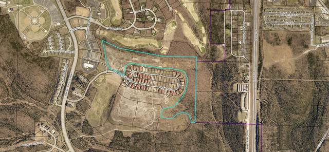 24.33 Acres - Siena Blvd., Branson, MO 65616 (MLS #60158874) :: Winans - Lee Team | Keller Williams Tri-Lakes
