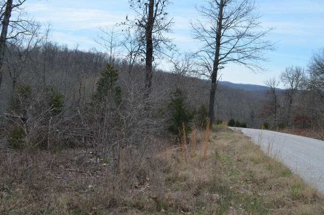 Lot 6 Scenic Heights, Bruner, MO 65620 (MLS #60159799) :: The Real Estate Riders