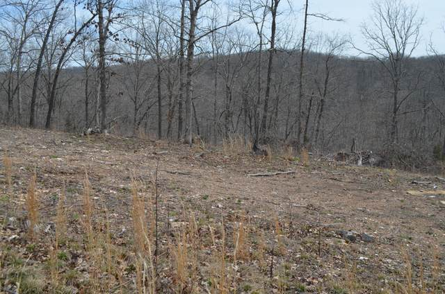 Lot 7 Scenic Heights, Bruner, MO 65620 (MLS #60159800) :: The Real Estate Riders