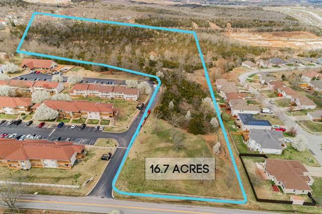 1580 Bird Road, Branson, MO 65616 (MLS #60159987) :: Team Real Estate - Springfield