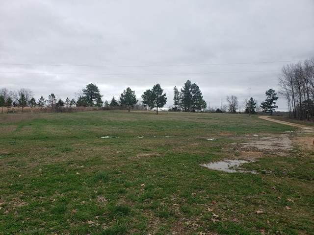 2651 P Highway, Alton, MO 65606 (MLS #60160159) :: Winans - Lee Team | Keller Williams Tri-Lakes
