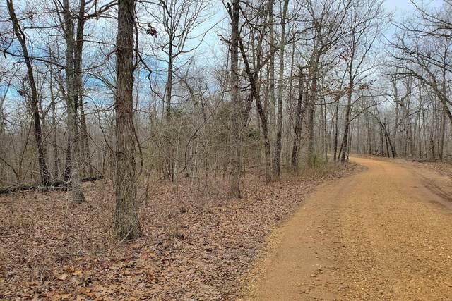 000 County Road 224, Alton, MO 65606 (MLS #60160405) :: Weichert, REALTORS - Good Life