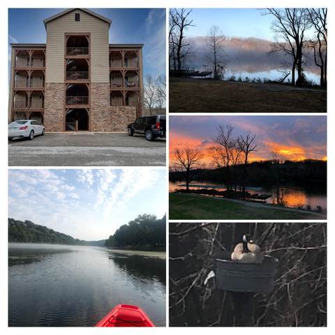 1707 Lake Shore Drive #1, Branson, MO 65616 (MLS #60160433) :: Winans - Lee Team | Keller Williams Tri-Lakes