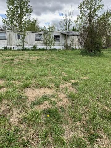 224 Maplewood Drive, Billings, MO 65610 (MLS #60161233) :: Team Real Estate - Springfield