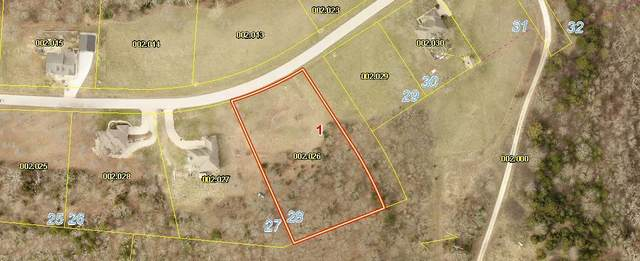 000-Lot 28 Mule Barn Drive, Cape Fair, MO 65624 (MLS #60161260) :: Winans - Lee Team | Keller Williams Tri-Lakes