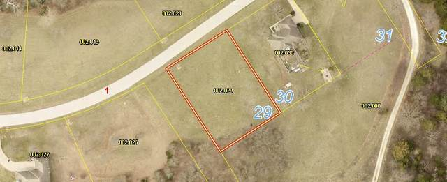 000-Lot 29 Mule Barn Drive, Cape Fair, MO 65624 (MLS #60161261) :: Winans - Lee Team | Keller Williams Tri-Lakes