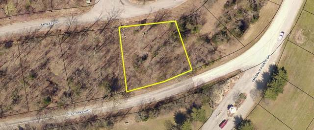 000-Lot 273a Hill Haven Road, Hollister, MO 65672 (MLS #60161867) :: Winans - Lee Team | Keller Williams Tri-Lakes