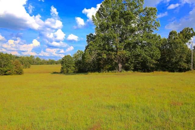 211 County Road, Alton, MO 65606 (MLS #60162379) :: Team Real Estate - Springfield