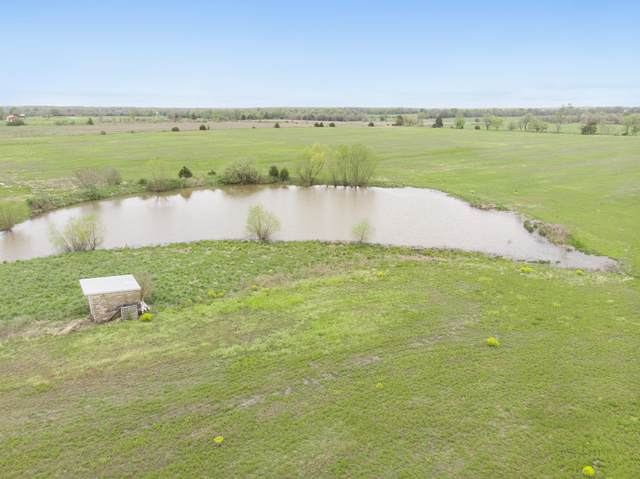 Tbd Lawrence 2130, Mt Vernon, MO 65712 (MLS #60162458) :: Sue Carter Real Estate Group