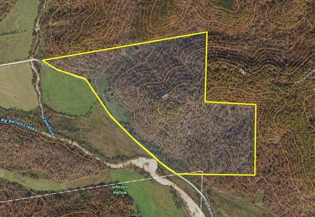 Route 7 Box 371  Tract F, Doniphan, MO 63935 (MLS #60163849) :: Team Real Estate - Springfield