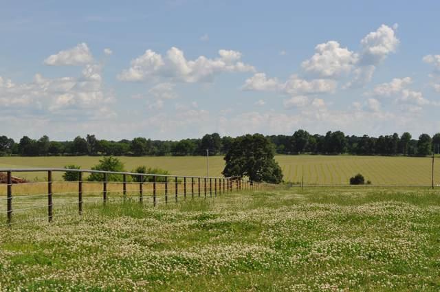 000 State Highway 174, Billings, MO 65610 (MLS #60164215) :: Sue Carter Real Estate Group