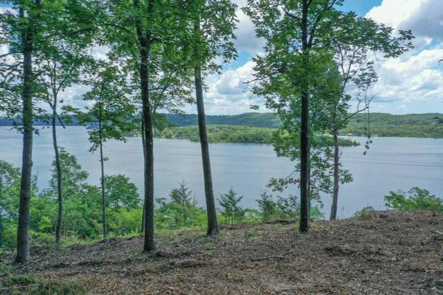 000 Logslide Bluff, Lampe, MO 65681 (MLS #60164929) :: The Real Estate Riders