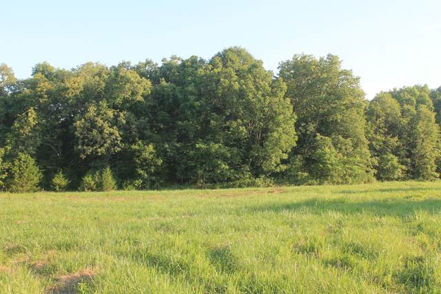 76 State Rd T, Buffalo, MO 65622 (MLS #60166337) :: Sue Carter Real Estate Group