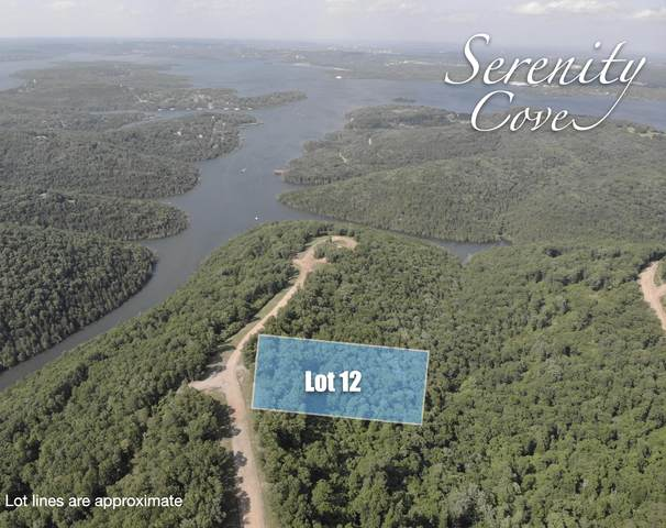 Lot 12 Serenity Cove Drive, Blue Eye, MO 65611 (MLS #60166525) :: Clay & Clay Real Estate Team