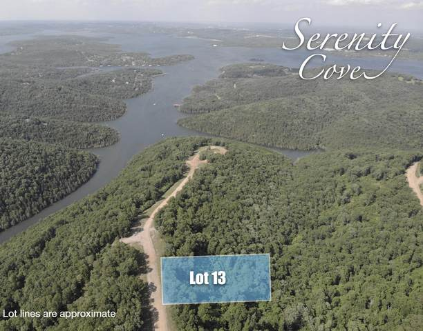 Lot 13 Serenity Cove Drive, Blue Eye, MO 65611 (MLS #60166526) :: Clay & Clay Real Estate Team