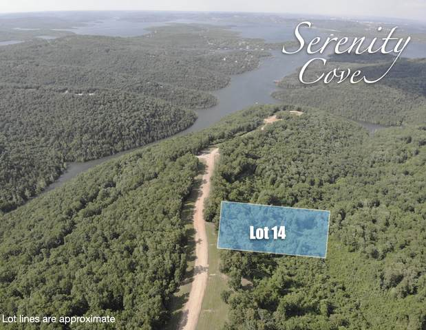 Lot 14 Serenity Cove Drive, Blue Eye, MO 65611 (MLS #60166527) :: Clay & Clay Real Estate Team