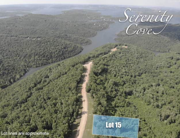 Lot 15 Serenity Cove Drive, Blue Eye, MO 65611 (MLS #60166528) :: Clay & Clay Real Estate Team