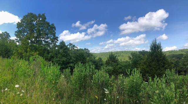 Lot 22 Enchanted Meadows, Ava, MO 65608 (MLS #60166583) :: Weichert, REALTORS - Good Life