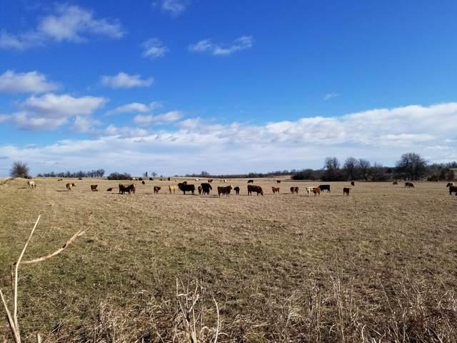 3456 Farm Rd 39, Ash Grove, MO 65604 (MLS #60167329) :: Winans - Lee Team | Keller Williams Tri-Lakes
