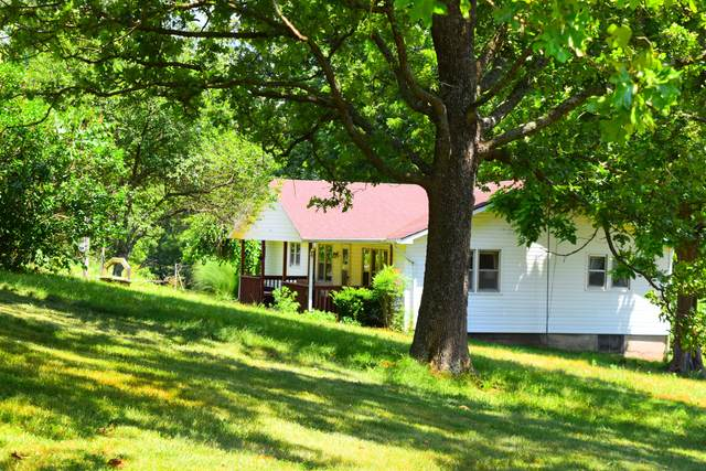 1672 Green Valley Road, Clever, MO 65631 (MLS #60167821) :: Sue Carter Real Estate Group