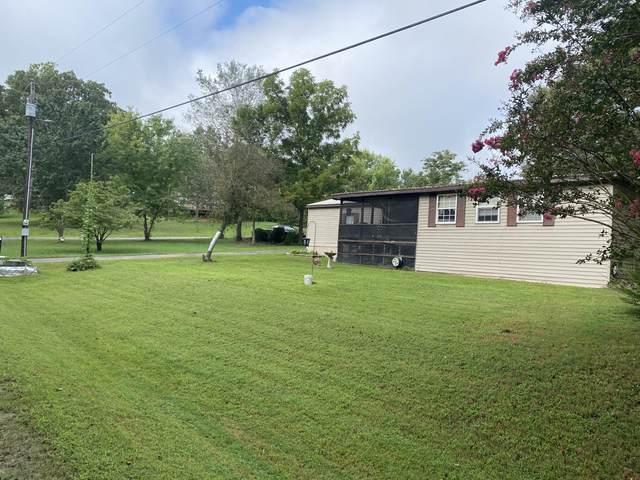 103 White Wing Lane, Blue Eye, MO 65611 (MLS #60168766) :: Clay & Clay Real Estate Team