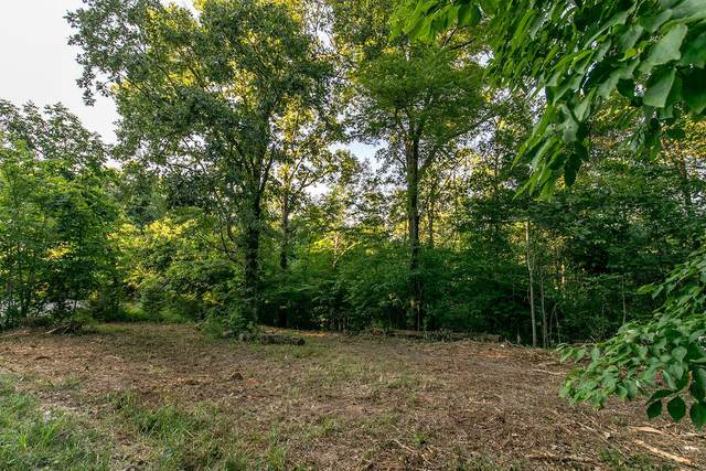 Lot 5 Ph 1 Misty River Subdivision, Nixa, MO 65714 (MLS #60170200) :: United Country Real Estate