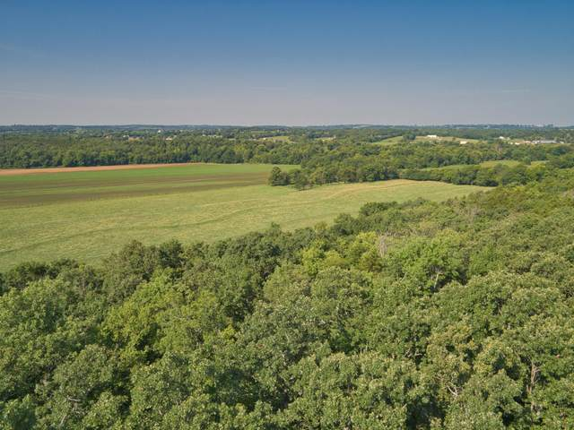 000 E 517th Road Tract-1, Halfway, MO 65663 (MLS #60170234) :: Team Real Estate - Springfield