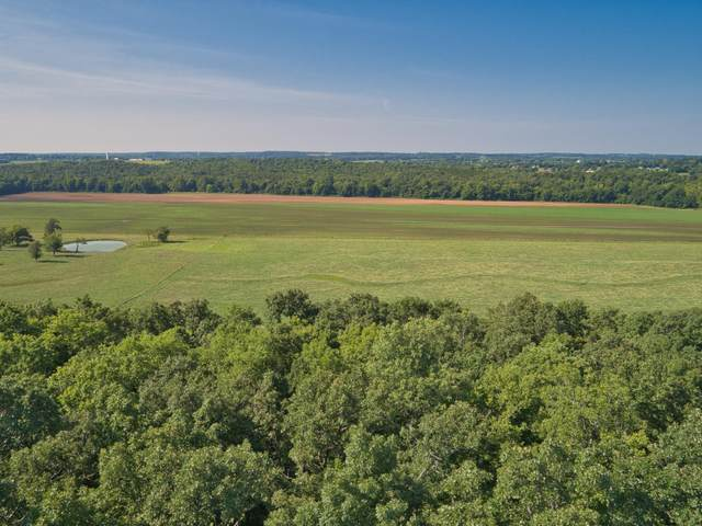 000 E 517th Road Tract-2, Halfway, MO 65663 (MLS #60170236) :: Team Real Estate - Springfield