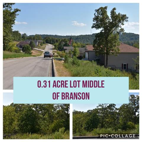 000 Anne Lane #20, Branson, MO 65616 (MLS #60172135) :: United Country Real Estate
