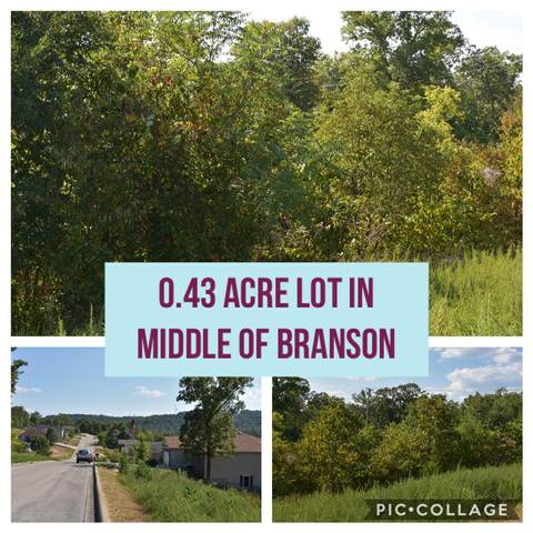 000 Anne Lane #21, Branson, MO 65616 (MLS #60172140) :: United Country Real Estate