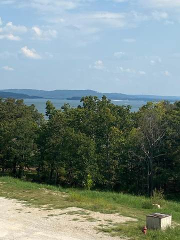 164 Dogwood Park Trail #1202, Indian Point, MO 65616 (MLS #60172799) :: Team Real Estate - Springfield
