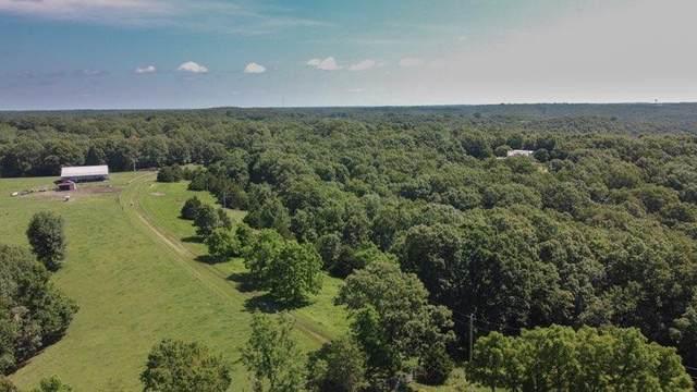 000 Oak Grove Lane, Galena, MO 65656 (MLS #60174806) :: Team Real Estate - Springfield