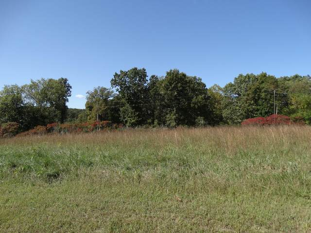 Lot 5 Oxford St, Shell Knob, MO 65747 (MLS #60175027) :: Winans - Lee Team | Keller Williams Tri-Lakes