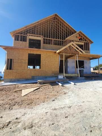 Tbd David Shawn Drive, Indian Point, MO 65616 (MLS #60175235) :: Team Real Estate - Springfield
