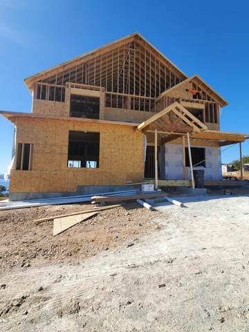 Tbd David Shawn Drive, Indian Point, MO 65616 (MLS #60175237) :: Team Real Estate - Springfield