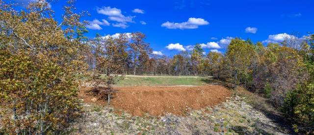 000 Blue Bird Rd Lot 18, Eminence, MO 65466 (MLS #60175893) :: United Country Real Estate