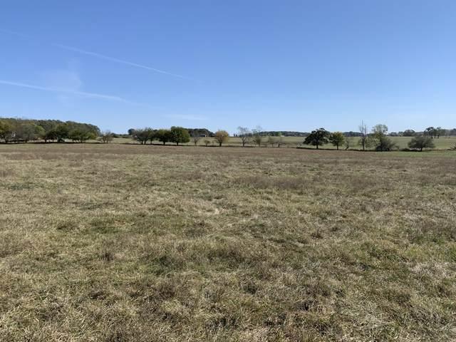 T B D Meadowlark Road Tract 5, Ozark, MO 65721 (MLS #60176543) :: Winans - Lee Team | Keller Williams Tri-Lakes
