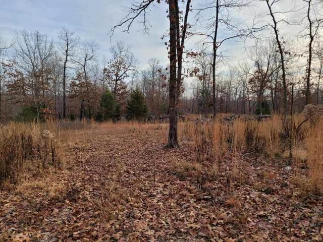 Tbd County Road 7830, Caulfield, MO 65626 (MLS #60178779) :: The Real Estate Riders