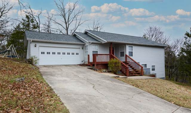 289 Fox Ridge Road, Branson, MO 65616 (MLS #60178981) :: Team Real Estate - Springfield