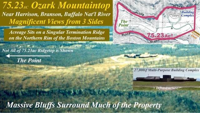 5300 Point Road, Harrison, AR 72601 (MLS #60178982) :: Team Real Estate - Springfield