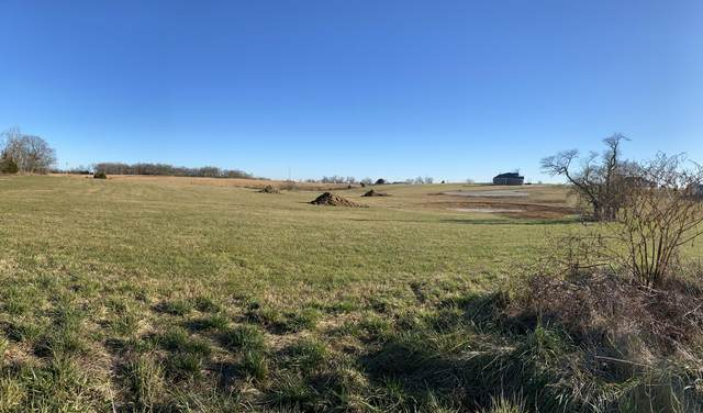Lot 3 Alexander Drive, Sparta, MO 65753 (MLS #60179171) :: Evan's Group LLC