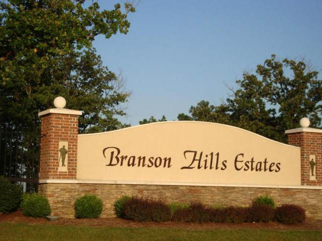 Lot 1 Ph 8 Pebble Beach Drive, Branson, MO 65616 (MLS #60179534) :: Winans - Lee Team | Keller Williams Tri-Lakes