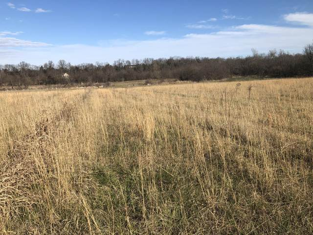 Lot 13 Timber Creek Estates, Mt Vernon, MO 65712 (MLS #60179979) :: The Real Estate Riders