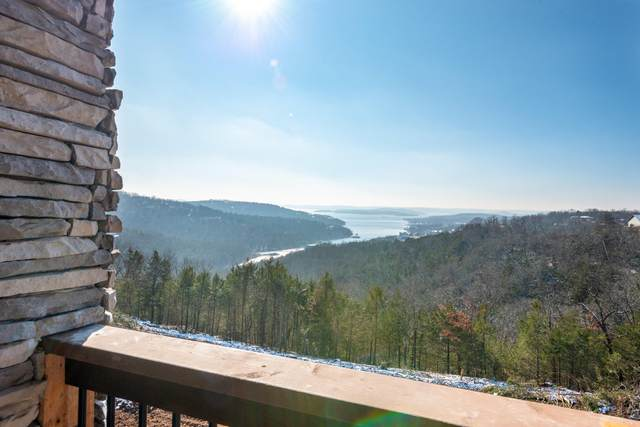 Tbd David Shawn Drive, Indian Point, MO 65616 (MLS #60180560) :: Sue Carter Real Estate Group