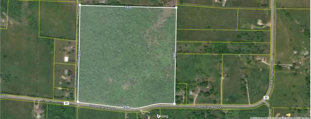 0 State Highway Zz & Maples Lane, Billings, MO 65610 (MLS #60182186) :: The Real Estate Riders