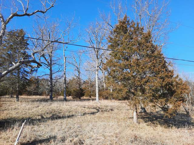 000 Green Briar Drive, Branson, MO 65616 (MLS #60182890) :: Tucker Real Estate Group | EXP Realty