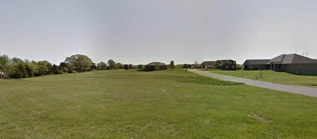 316 Oak Tree Lane, Ozark, MO 65721 (MLS #60184780) :: Winans - Lee Team | Keller Williams Tri-Lakes