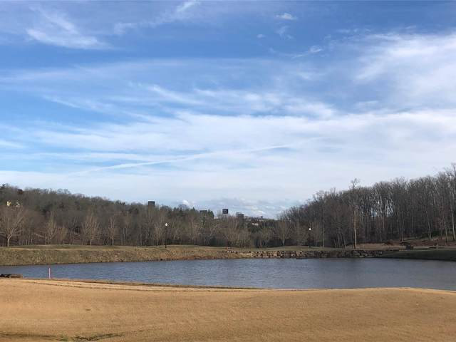 Tbd Phase 4 Lot 4, Branson, MO 65616 (MLS #60185597) :: Tucker Real Estate Group | EXP Realty